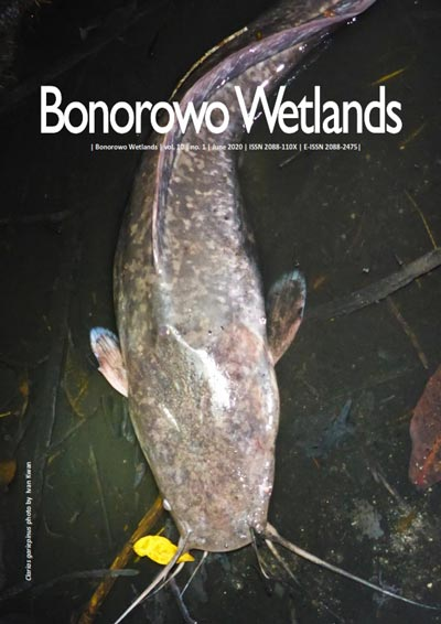 Bonorowo Wetlands